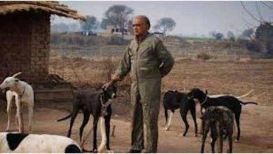Photo of سابق گورنر پنجاب غلام مصطفیٰ کھر کے کتے کو ٹکر مارنے پر شہری کے خلاف مقدمہ درج