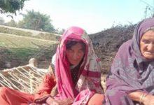 Photo of دائرہ دین پناہ شرابی بھائی نے معزور بہن کی عزت تار تار کر دی