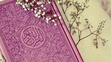 Photo of ناظرہ قرآن کی تعلیم اسکولوں میں لازمی قرار دینے کا بل منظور