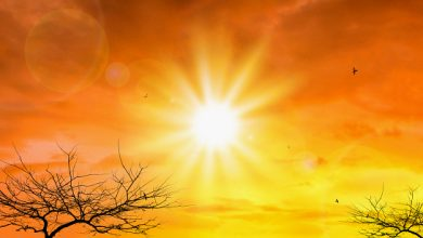 Photo of کیا موسم گرما میں کورونا وائرس ختم ہو جائے گا؟